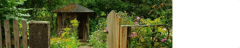 Jardin 03 - Lutter contre les pucerons ...